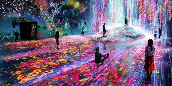 Step into teamLab's digital worlds